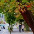 Photos: 秋の軽井沢#2