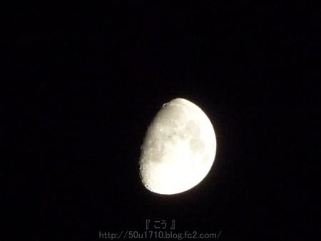 140806-お月さん (4)