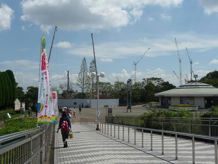 140830-万博記念公園 (7)
