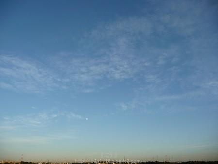 141006-お月さん (1)