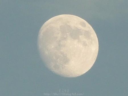 141006-お月さん (8)