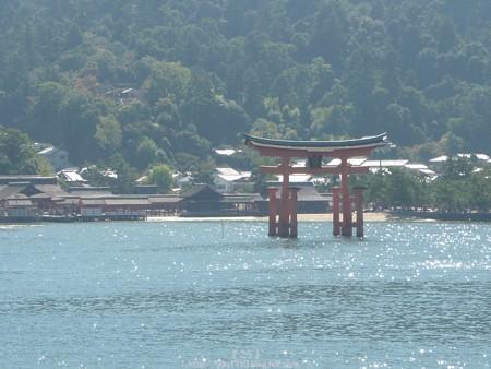 151018-宮島 (27)