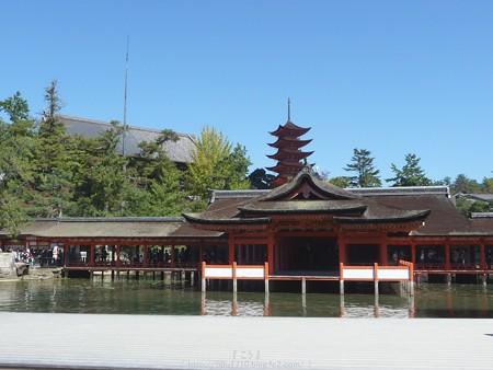 151018-宮島 (80)