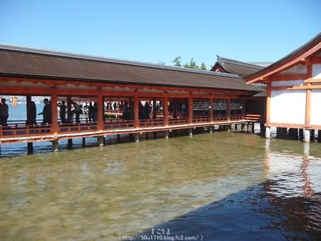 151018-宮島 (118)