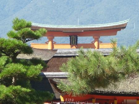 151018-宮島 (155)