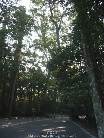 151021-伊勢神宮 内宮 (28)