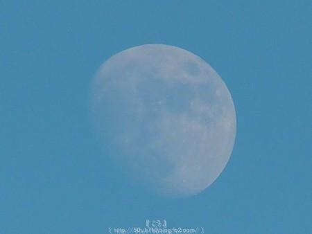 151222-お月さん