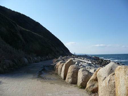 160110-伊良湖岬 (2)