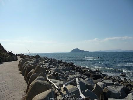 160110-伊良湖岬 (5)