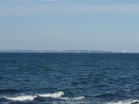 160110-伊良湖岬 (9)