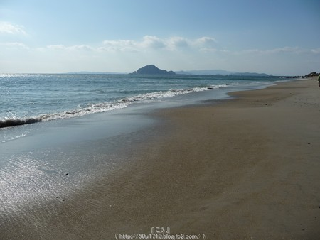 160110-伊良湖岬 (25)