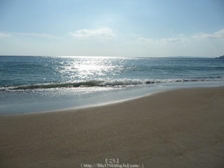 160110-伊良湖岬 (32)