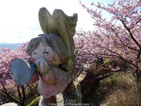 160226-松田町 河津桜 (71)