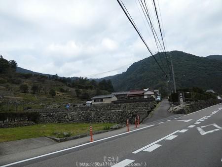 160324-熊野古道 大門坂 (5)