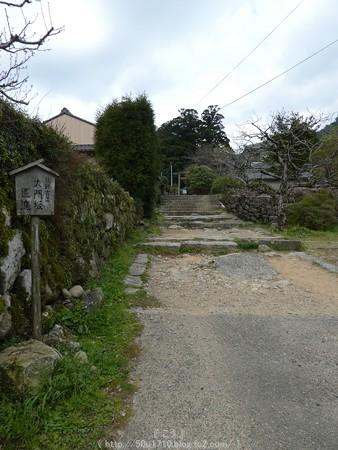 160324-熊野古道 大門坂 (17)