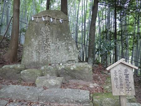 160324-熊野古道 大門坂 (40)