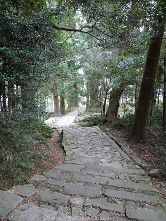 160324-熊野古道 大門坂 (42)