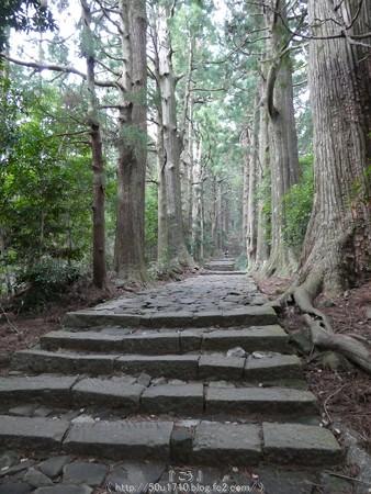 160324-熊野古道 大門坂 (57)