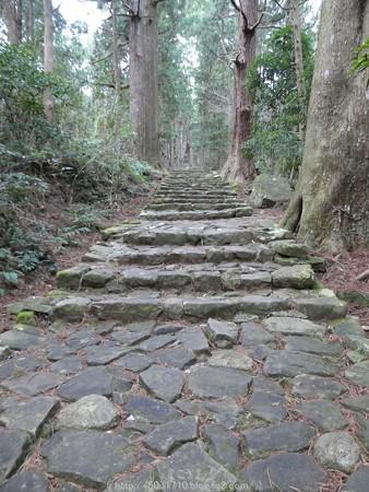 160324-熊野古道 大門坂 (61)