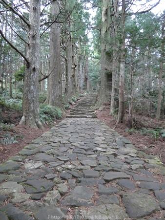 160324-熊野古道 大門坂 (66)