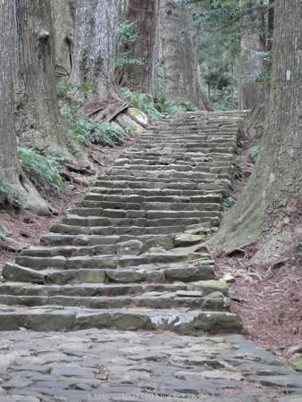 160324-熊野古道 大門坂 (67)