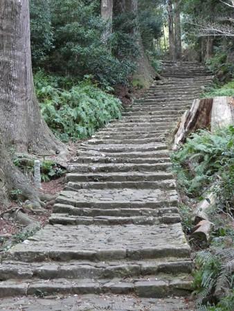 160324-熊野古道 大門坂 (80)