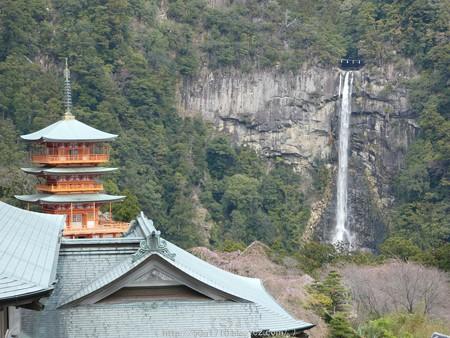 160324-青岸渡寺 (4)