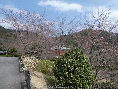 160324-青岸渡寺 (9)
