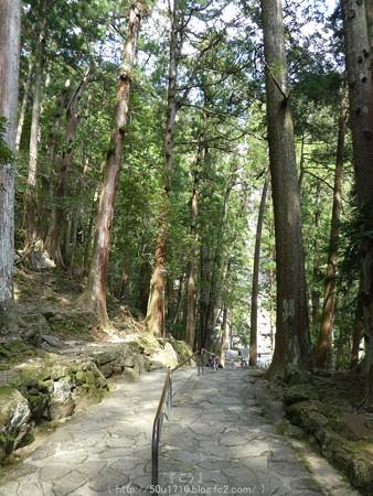 160324-那智の滝 (9)