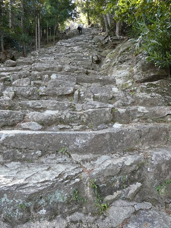160324-神倉神社 (6)