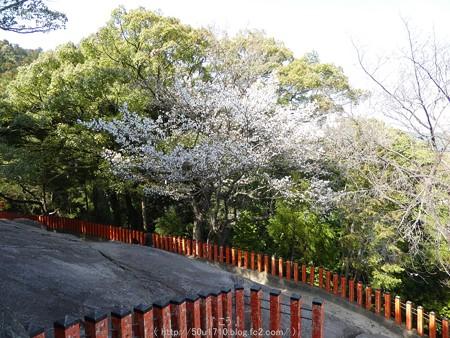160324-神倉神社 (30)