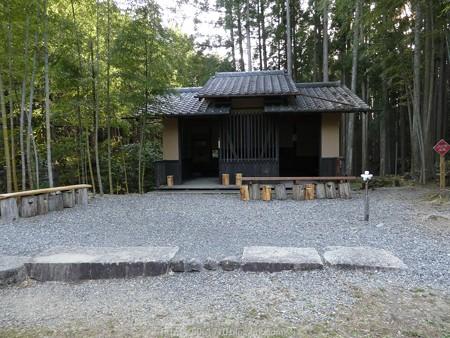 160325-熊野古道 小辺路 (8)