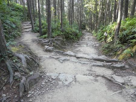 160325-熊野古道 小辺路 (29)