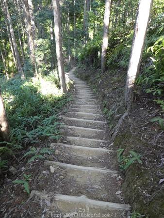 160325-熊野古道 小辺路 (45)