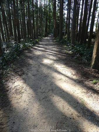 160325-熊野古道 小辺路 (62)