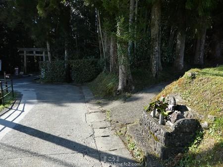 160325-熊野古道 小辺路 (71)