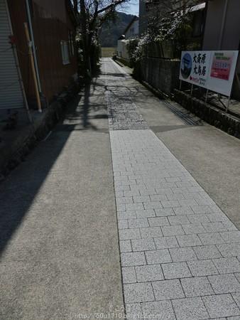 160325-大斎原 (1)