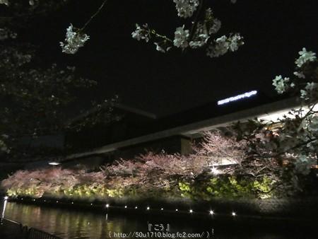 160410-THE ALFEE 京都2日目 (22)