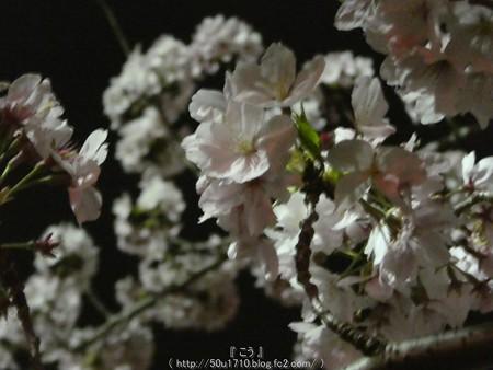160410-THE ALFEE 京都2日目 (24)