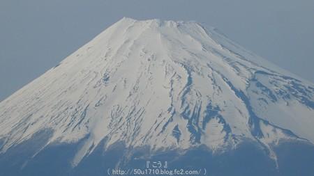 160406-東田子 (14)