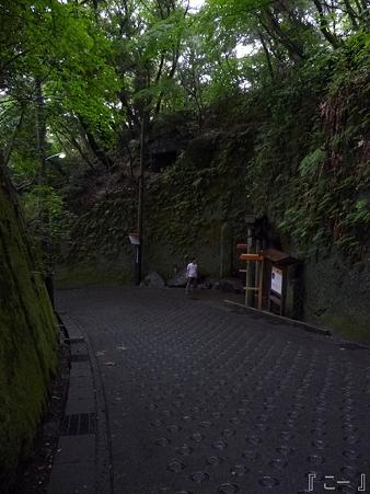 110620-葛原が丘・銭洗弁天 (63)