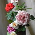 Photos: 夏のミニバラ切花