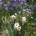 Photos: 春が来ーた