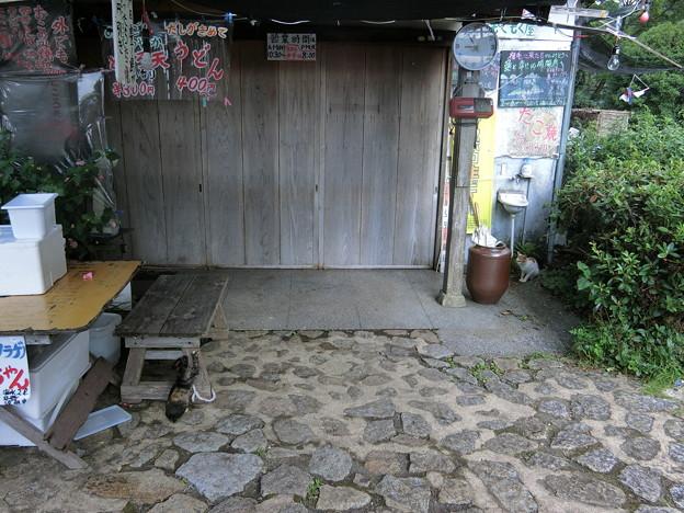 福岡〜東京 ツーリング 20150923 (2)