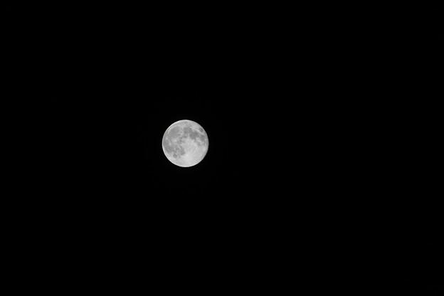 葉月のスーパームーン
