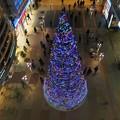 Photos: 上からクリスマスツリー2