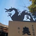 江島神社の竜