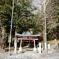 Photos: 頼政神社