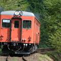 いすみ鉄道 臨時列車81D (キハ52)