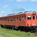 いすみ鉄道 臨時急行2号 (キハ52 125)